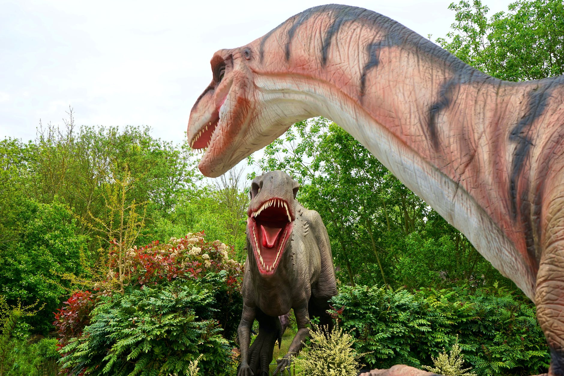 Is the traditional marketing agency model like doing business with dinosaurs?